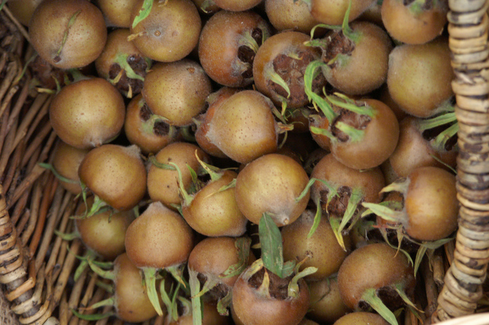 фруктово-ягодное настроение 42602
