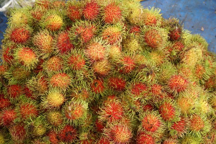 фруктово-ягодное настроение 69257