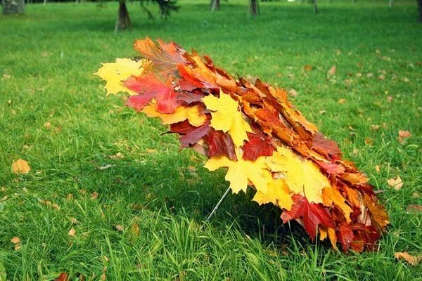 Осенний зонт (600x400, 106Kb)
