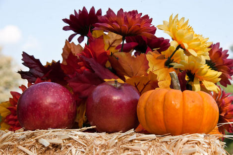 fall-table-decor23 (470x313, 91Kb)