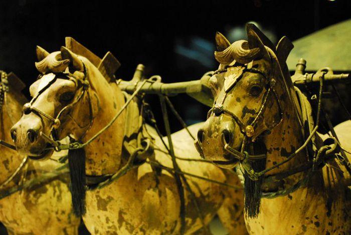 Терракотовая армия первого императора Китая в Сиане 12833