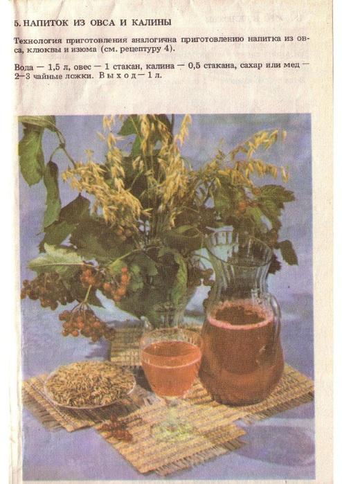 Лечебные и витаминные напитки_7 (494x700, 152Kb)