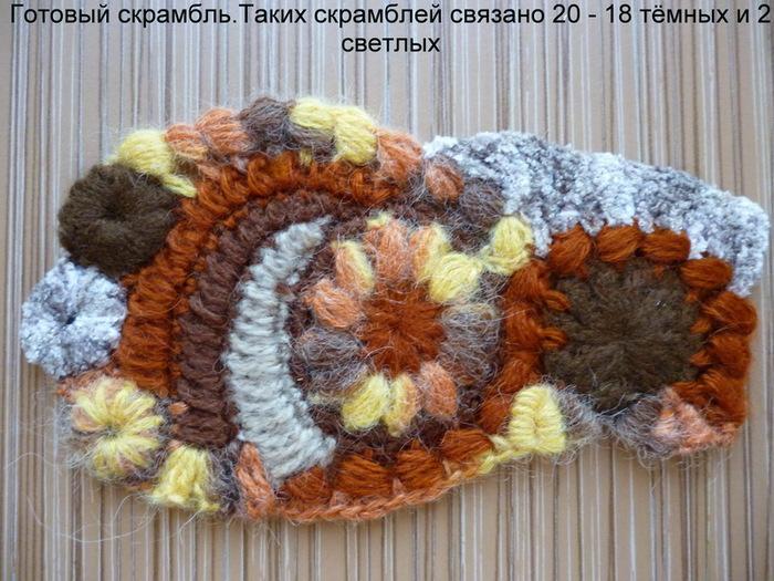 4433838_P1000782_novii_razmer (700x525, 155Kb)