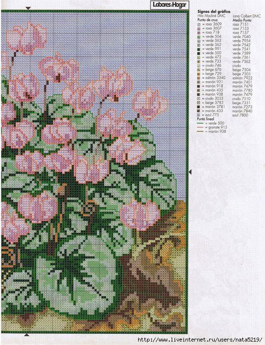 Pаgina 114 - Patrвn 2 y 3