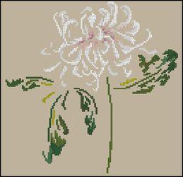 3937664_DMCArum_Chrysanthemum (259x250, 11Kb)