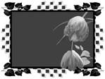 Превью 0_46c41_576ecb3e_XL (600x450, 39Kb)