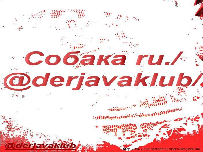 @Радуга1+Собака ru.@derjavaklub (700x525, 231Kb)