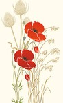 ������ 233-giant-poppy1-C13 (296x480, 27Kb)