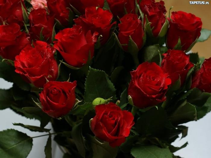 розы свежий букет (700x525, 147Kb)