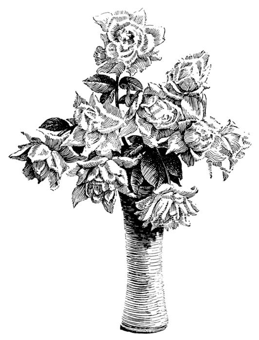 roses039 (532x700, 284Kb)