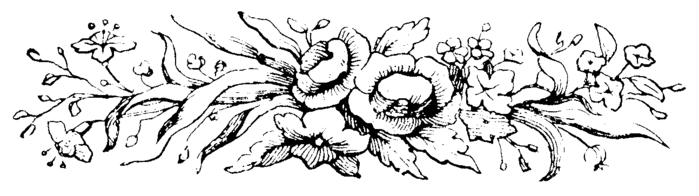 roses055 (700x196, 48Kb)