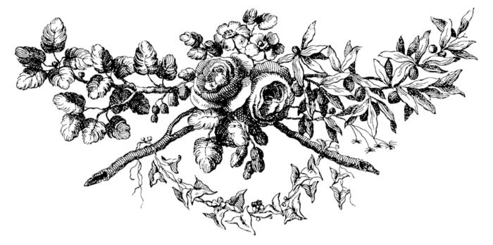 roses069 (700x348, 112Kb)