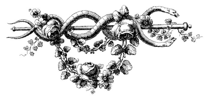 roses071 (700x334, 90Kb)