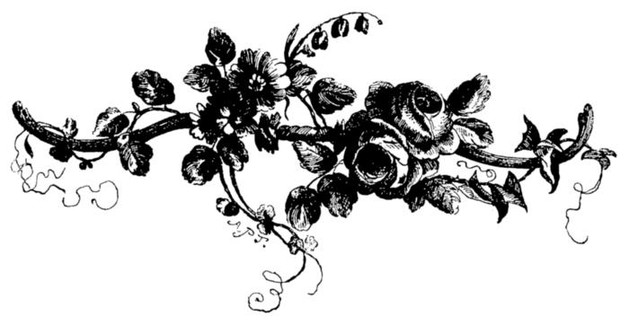 roses073 (700x362, 74Kb)