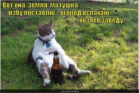 zemlya-matushka_1314735723 (480x320, 55Kb)