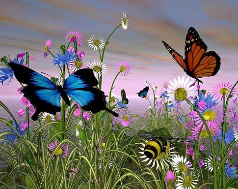 butterfly-8205 (485x384, 111Kb)