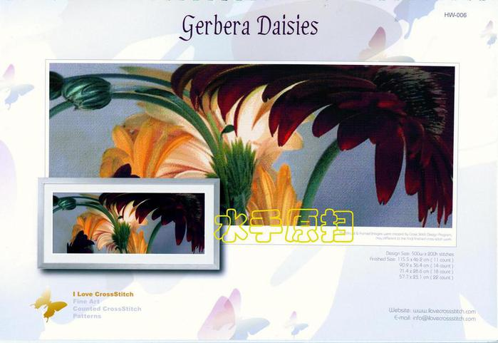 gerbera daisies (700x481, 45Kb)