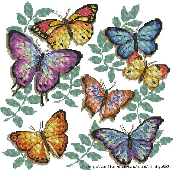 Butterfly Profusion Counted Cross Stitch Kit.