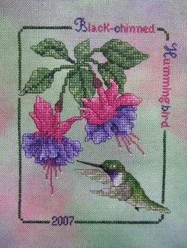 3971977_2007_Blackchinned_Hummingrbird (272x360, 79Kb)