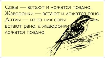 http://img1.liveinternet.ru/images/attach/c/4/78/953/78953633_195.jpg