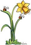 Превью Daffodil (394x576, 63Kb)