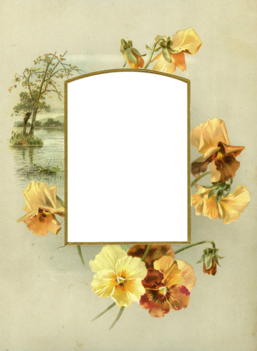 Floral_Frame_No5_by_DustyOldStock (512x700, 309Kb)