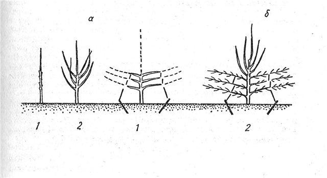 Часть 2 - Схема формирования