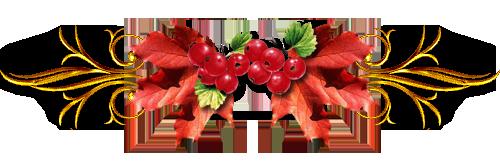 разделитель красная смородина (500x161, 87Kb)