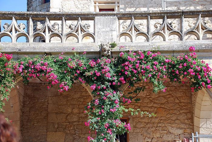 замок в Миланде (Chateau des Milandes). 85025