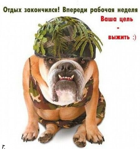 Понедельник - день тяжелый?/1318874850_ponedelnik (450x480, 38Kb)