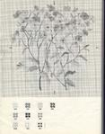 Превью 372 (549x700, 319Kb)