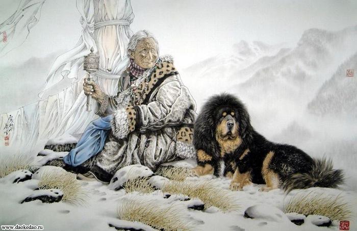 тибетский мастифф.