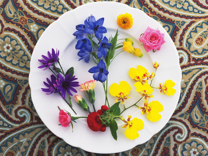 1243594222_flower_124 (700x525, 200Kb)