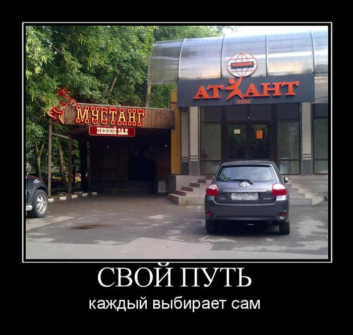 выбор пути/3479580_vibor_pyti (700x665, 64Kb)
