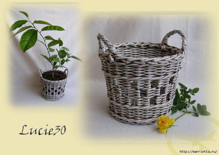 kvetinac-sachovnice2 (700x494, 136Kb)