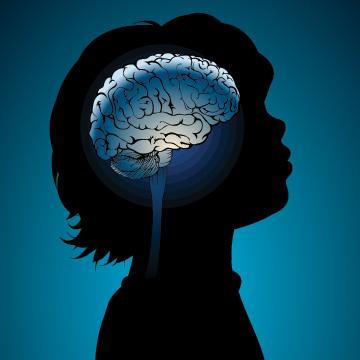 мозг (360x360, 32Kb)