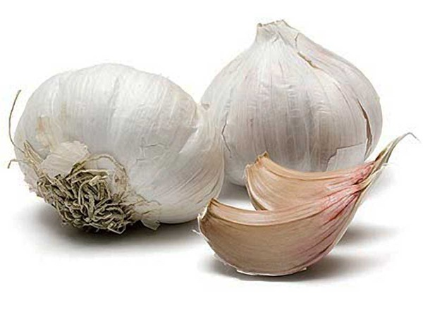 3279085_garlic_3_1_ (600x450, 50Kb)