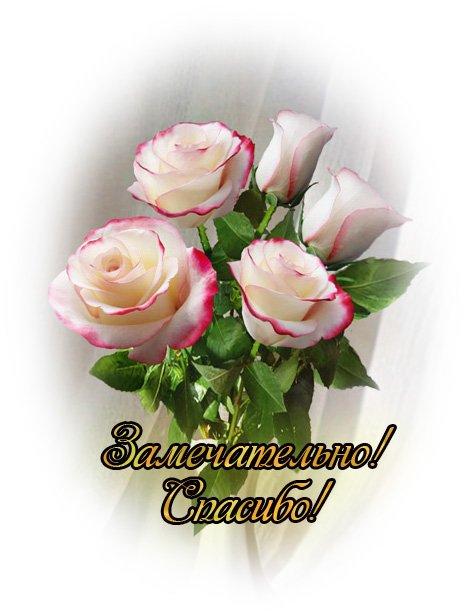 http://img1.liveinternet.ru/images/attach/c/4/79/304/79304979_81008048681542.jpg
