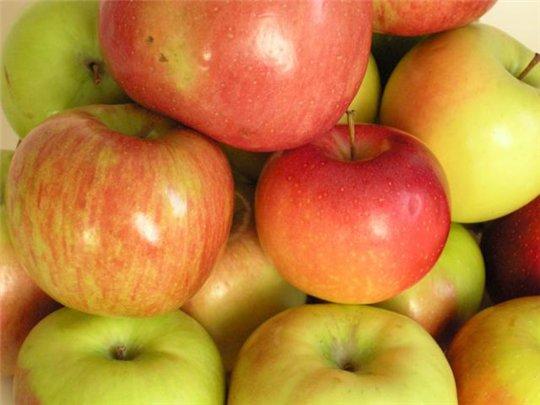 3f56ac4aca54.jpg яблоки (540x405, 36Kb)
