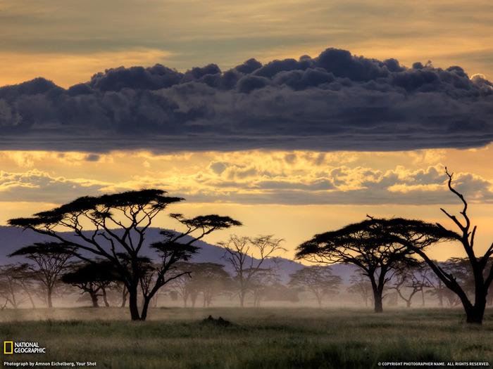 Лучшие национальные парки мира - Серенгети
