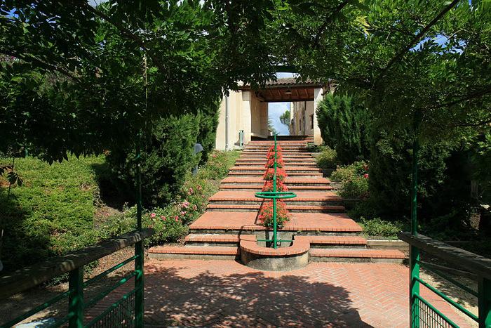 Есть в графском парке тихий пруд..... Там лилии цветут . .Ботанический сад Latour - Marliac. 59960