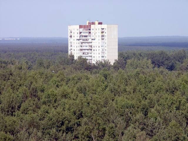 Дом в лесу/1319562356_dom_v_lesu (640x480, 53Kb)
