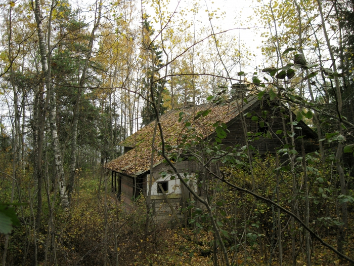 http://img1.liveinternet.ru/images/attach/c/4/79/42/79042695_large_3721868_IMG_1793.JPG