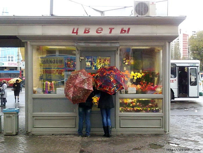 осень цветы воронеж/1319656328_cvetuy_osen__voronezh (698x524, 298Kb)