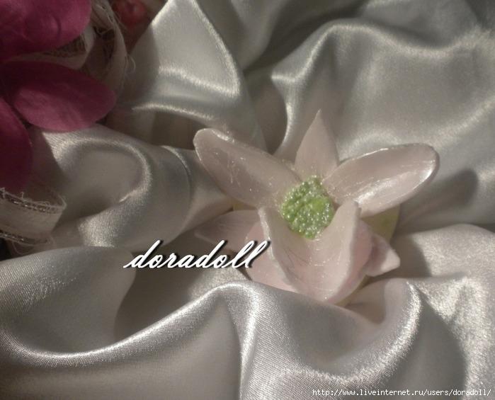 орхидея (700x565, 210Kb)