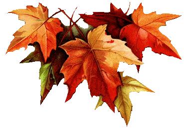 осенние листья (385x259, 83Kb)