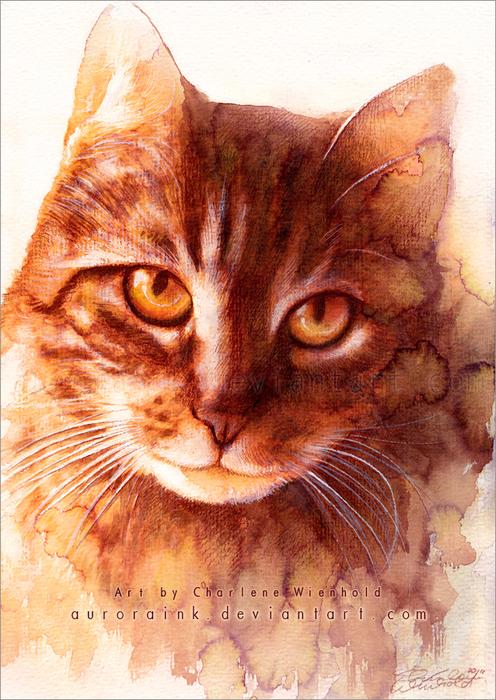 Макияж кошки мастер класс акварель пошагово #9