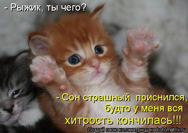 http://img1.liveinternet.ru/images/attach/c/4/79/513/79513415_120.jpg