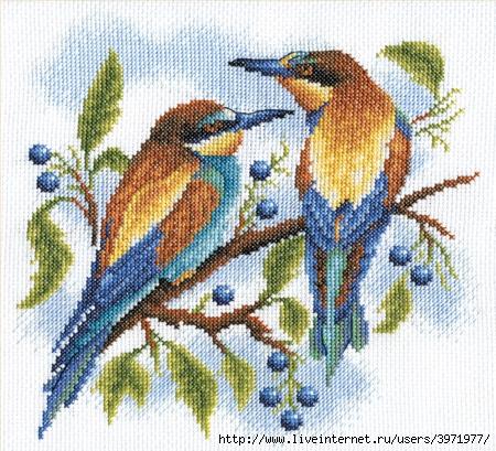Птицы-вышивка крестом