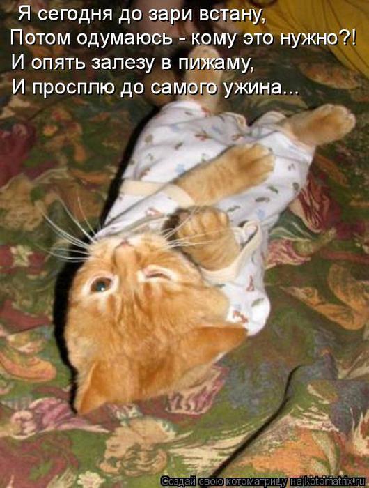 http://img1.liveinternet.ru/images/attach/c/4/79/516/79516025_large_b9.jpg